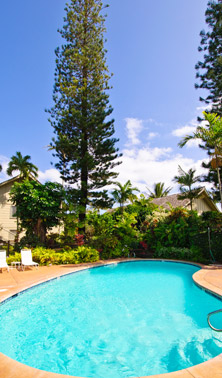 Kapaa Sands Swimming Pool
